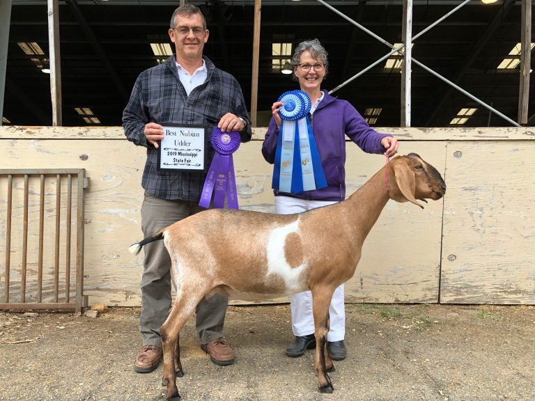 Butter Cup GCH Best Udder MS State Fair 2019